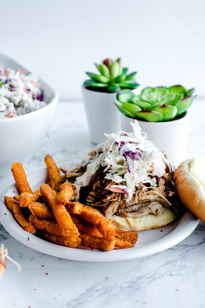 The Best Pulled Pork Recipe, served with fries, succulents behind plate