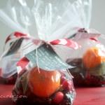 Homemade Orange Cranberry Home Fragrance