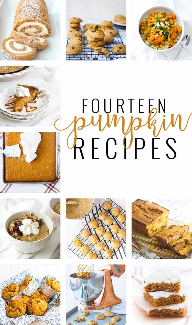 collage of Fourteen Pumpkin Recipes to Satisfy Your Fall Craving