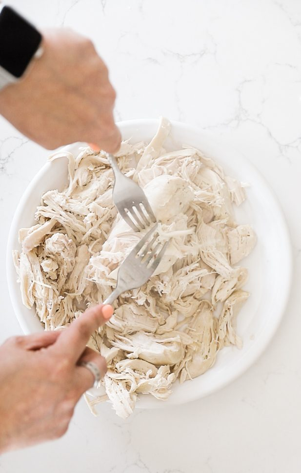 Chicken being shredded with two forks.