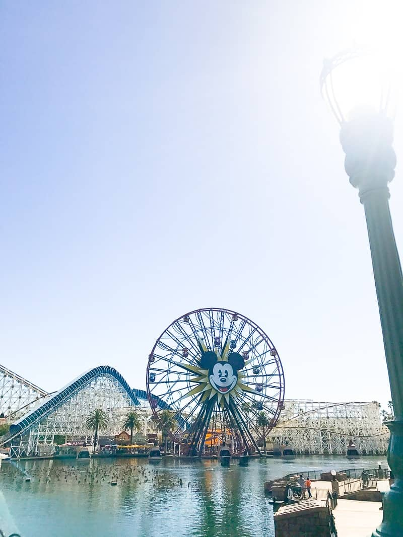 Disneyland Family Dining Guide